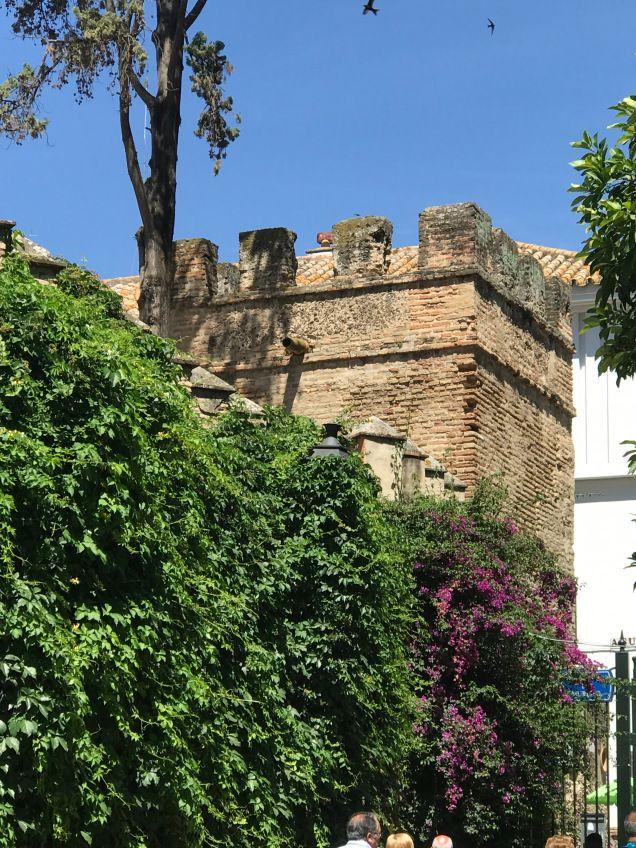 Muro Exterior del Alcázar