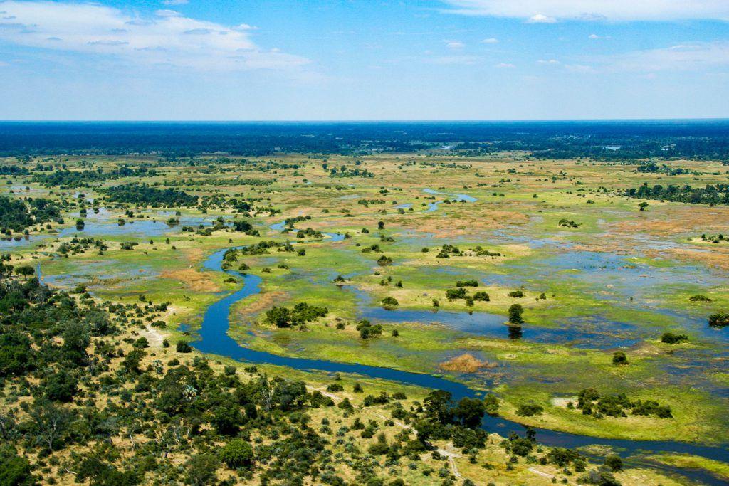 Artículos esenciales para un safari en Botswana