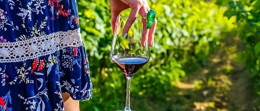 Vinos croatas: fenomenales y presidenciales