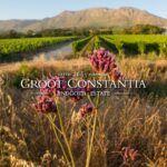 Conéctese con Our Heritage este septiembre y experimente la hermosa Groot Constantia