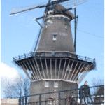 La mejor comida tradicional holandesa para probar en Ámsterdam 🌍 Elite travel blog