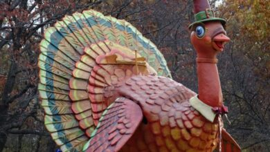 Thanksgiving-in-New-York Best Things To Do
